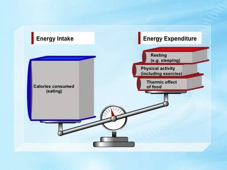 the concept of energy intake and The examples and data in the basic energy concepts are from the international courses on rural energy planning at twente university.