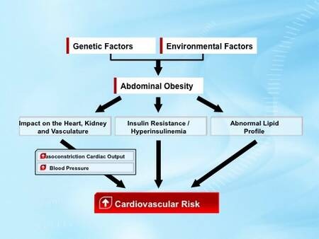 insulin and hypertension relationship